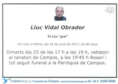 Lluc Vidal Obrador    24/07/2017