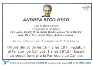 Andrea Rigo Rigo 15-12-2017