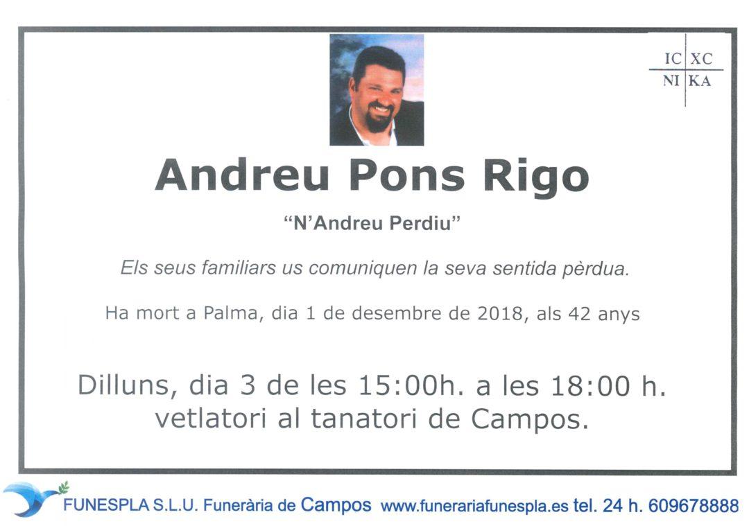 Andreu Pons Rigo  01/12/2018