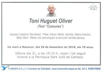 Toni Huguet Oliver   29/12/2018