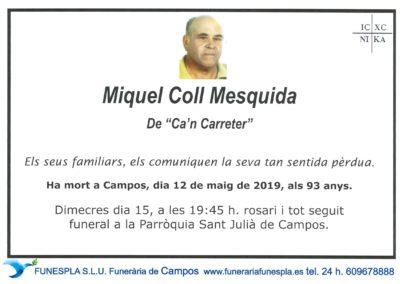 Miquel Coll Mesquida   12/05/2019