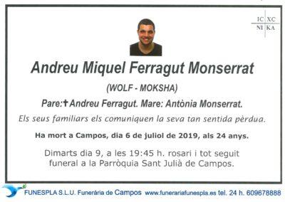 Andreu Miquel Ferragut Monserrat  06/07/2019