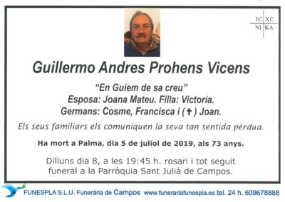 Guillermo Andres Prohens Vicens  05/07/2019