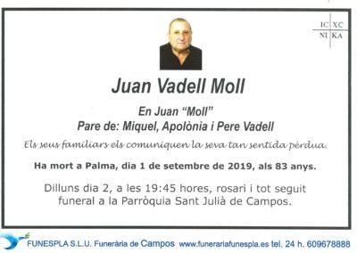 Juan Vadell Moll  01/09/2019