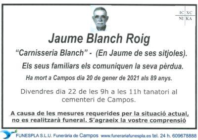 Jaume Blanch Roig   20-01-2021