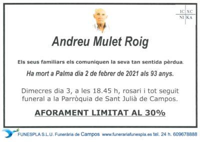 Andreu Mulet Roig 02/02/2021